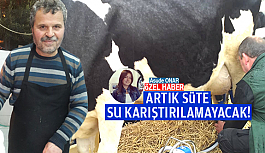 ARTIK SÜTE SU KARIŞTIRILAMAYACAK!